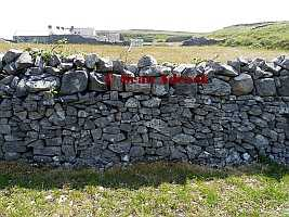 Standard Doubled Field Wall Inis Mor